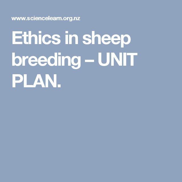 Ethics in sheep breeding – UNIT PLAN.