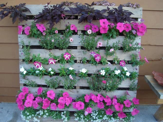 palette recycl e en jardini re fleurie palette. Black Bedroom Furniture Sets. Home Design Ideas