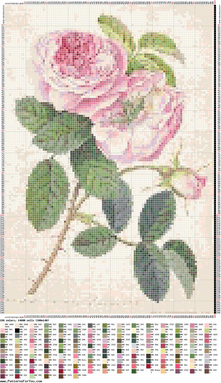 .-de-X-roses/d'altres-flors...