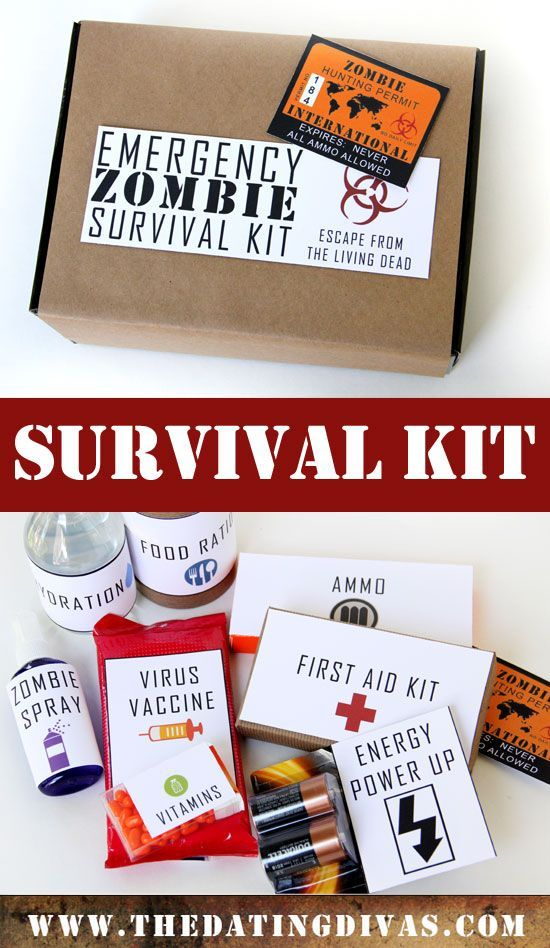 """Free printables for an """"Emergency Zombie Survival Kit""""- the hubby would love this.  lol."""