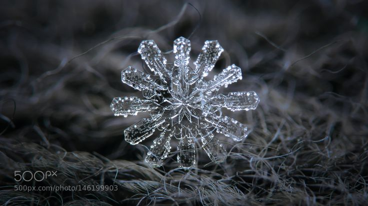 Snowflake wallpaper ultra HD 4K: Draft#3 by chaoticmind75 #nature #photooftheday #amazing #picoftheday
