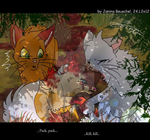 28 Best Tigerclaw Images On Pinterest