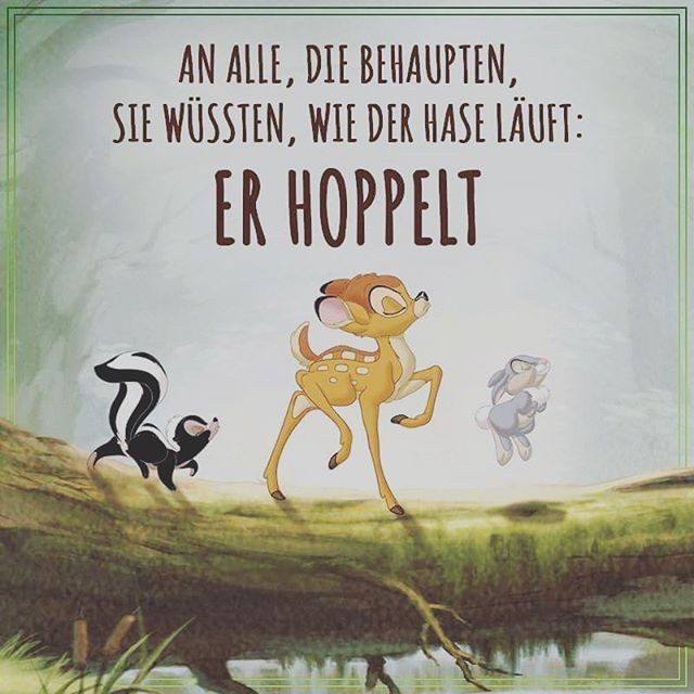 !!! #an #alle #die #behaupten #sie #wüssten #wie #der #hase #läuft #er #hoppel pati on Instagram
