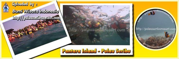 Pantara Island   Thousand Islands   Pulau Seribu Tourism