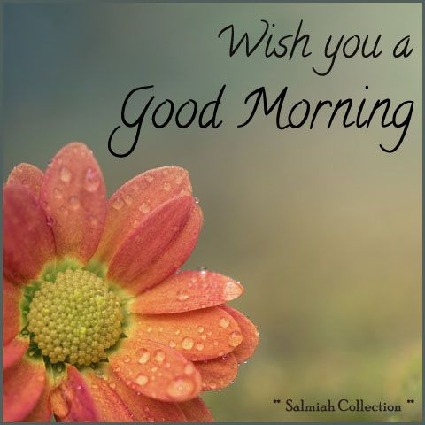 Good Morning Wish 38