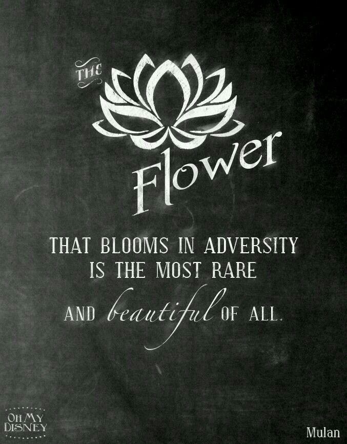 """Meaning of the lotus flower.  """"No mud, no Lotus"""""""