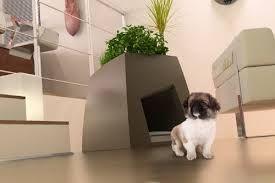 """Résultat de recherche d'images pour """"niche en bois pour petit chien à l'intérieur maison"""""""