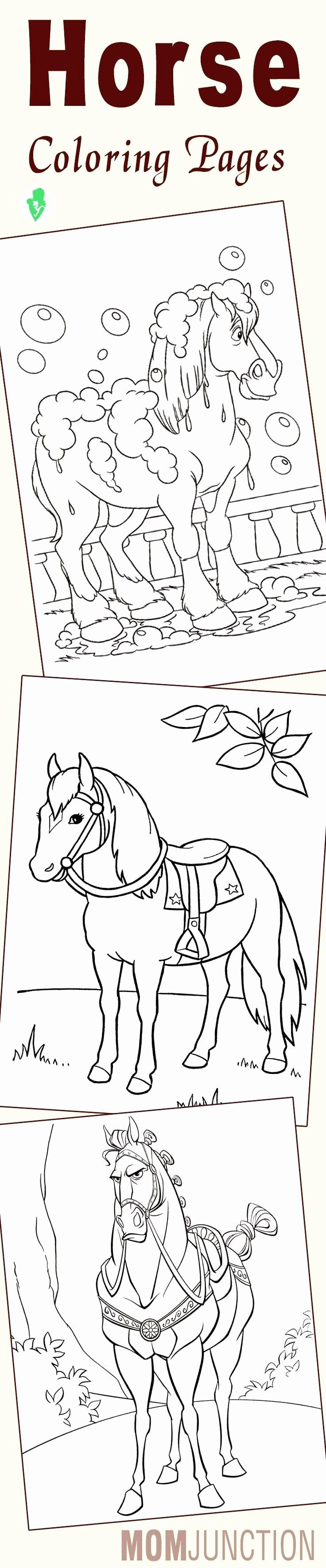 Printable Coloring Sheets Animals Best Of Elegant Horse Head Coloring Sheets Trasporti Horse Coloring Pages Coloring Pages Horse Coloring [ 3539 x 736 Pixel ]