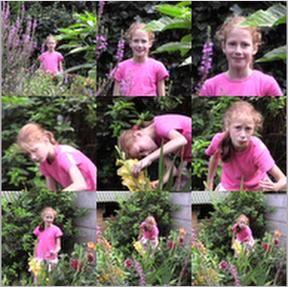 collage foto software - foto bewerken