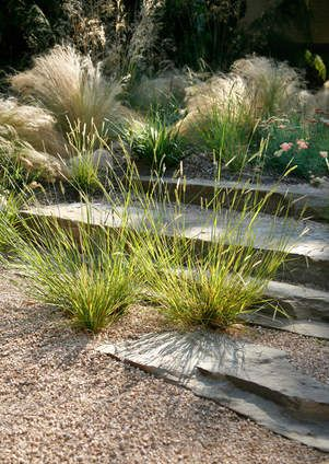 The perfect combination of grass, stone, and gravel