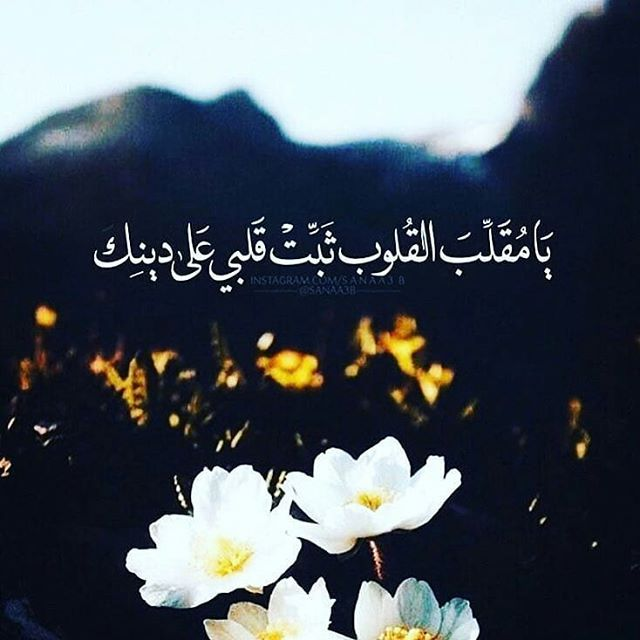Pin By Magda Abdelhady On كلمات اعجبتني Islamic Quotes Quran Islamic Quotes Quotations