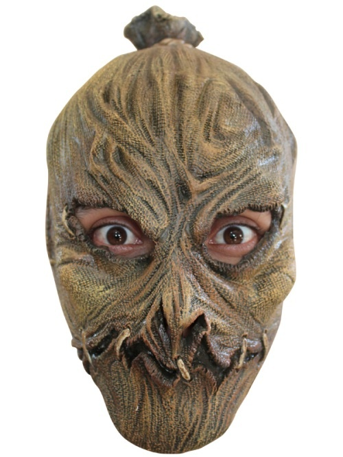 This Scarecrow full head mask is made to fit Children. Let them be the scariest scarecrow at the party