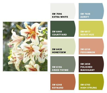 flowers: Chips,  Internet Site,  Website, Web Site, Paintings Colors, Flowers Arrangements, Paint Colors, Perfect Colors, 365 Flowers