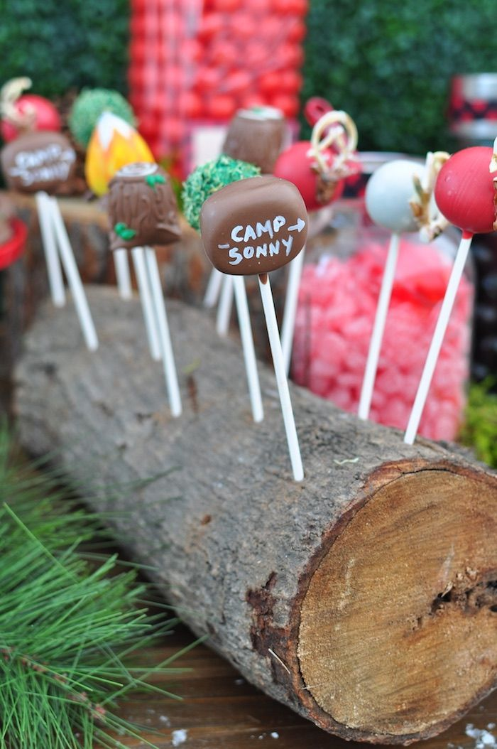 Camp cake pops in a log from a Winter Camping Themed Birthday Party on Kara's Party Ideas | KarasPartyIdeas.com (14)