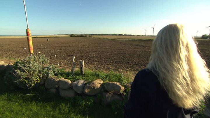 Aufstand auf Fehmarn: Insulaner wehren sich gegen den geplanten Industriepark
