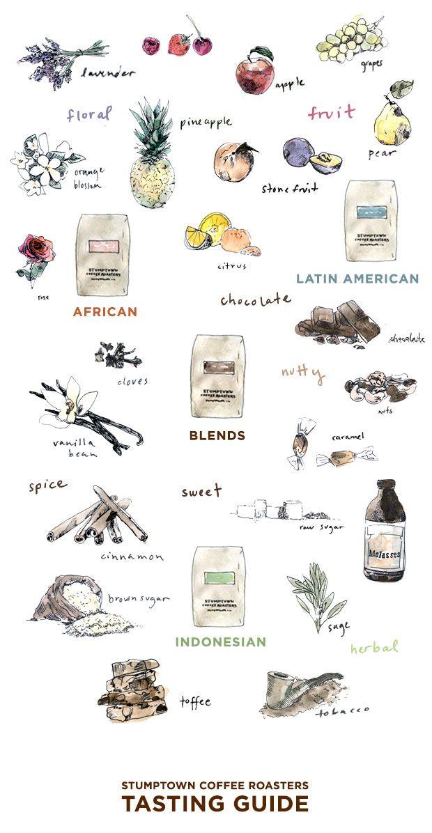 Coffee tasting guide via Stumptown