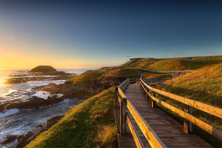 Jarrod Hyde Photography | The Nobbies, phillip island nature parks, VIC