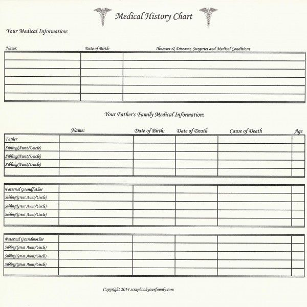 217 best images about family tree charts forms on for Family history charts templates