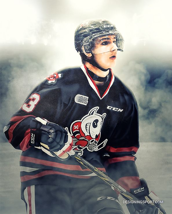Graham Knott, Niagara IceDogs — OHL 'Gamebreakers' Series
