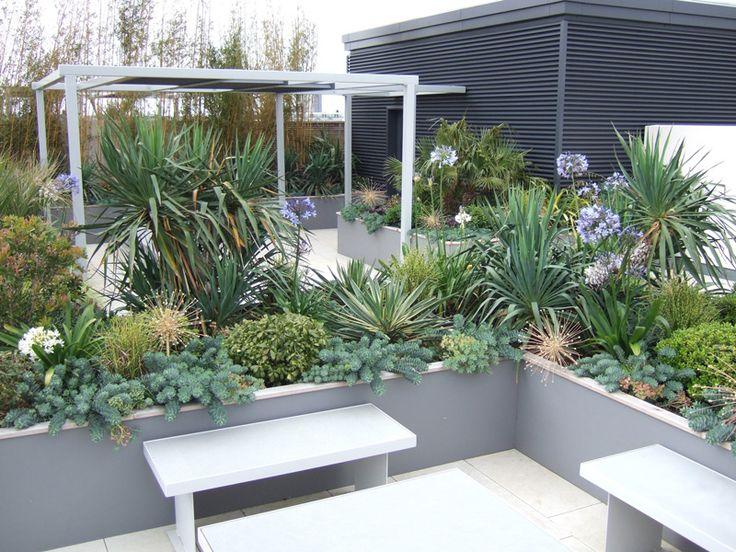 54 best images about Modern, Minimalist Garden on ...