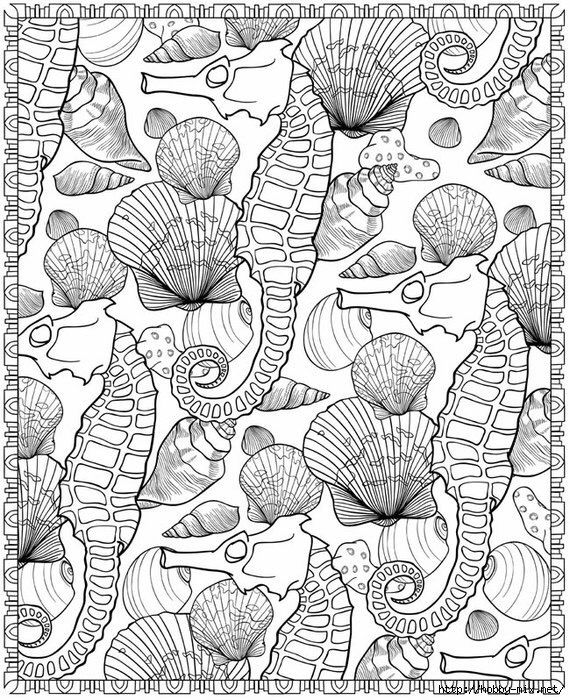 From Seashell Patterns Coloring Book