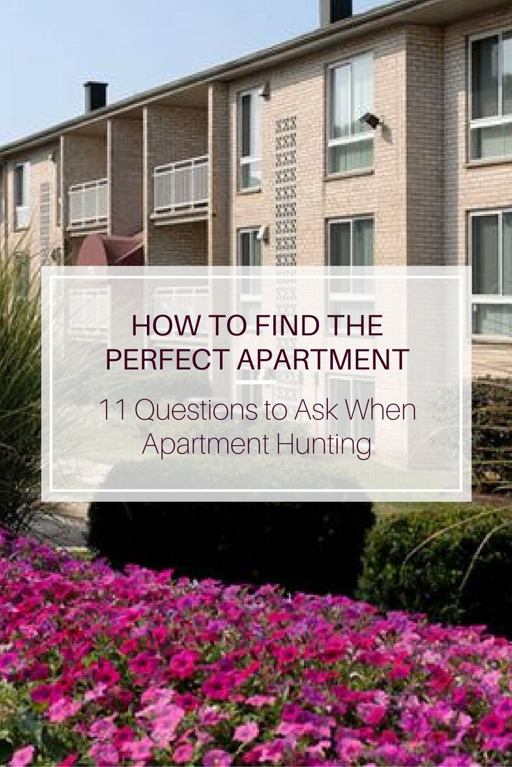 Hereu0027s How To Find The Perfect Apartment!
