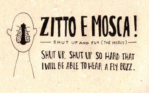 Learning Italian Language ~ Zitto e mosca! IFHN