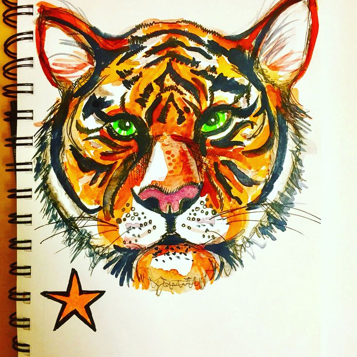 Tiger illustration by Lizzie Reakes