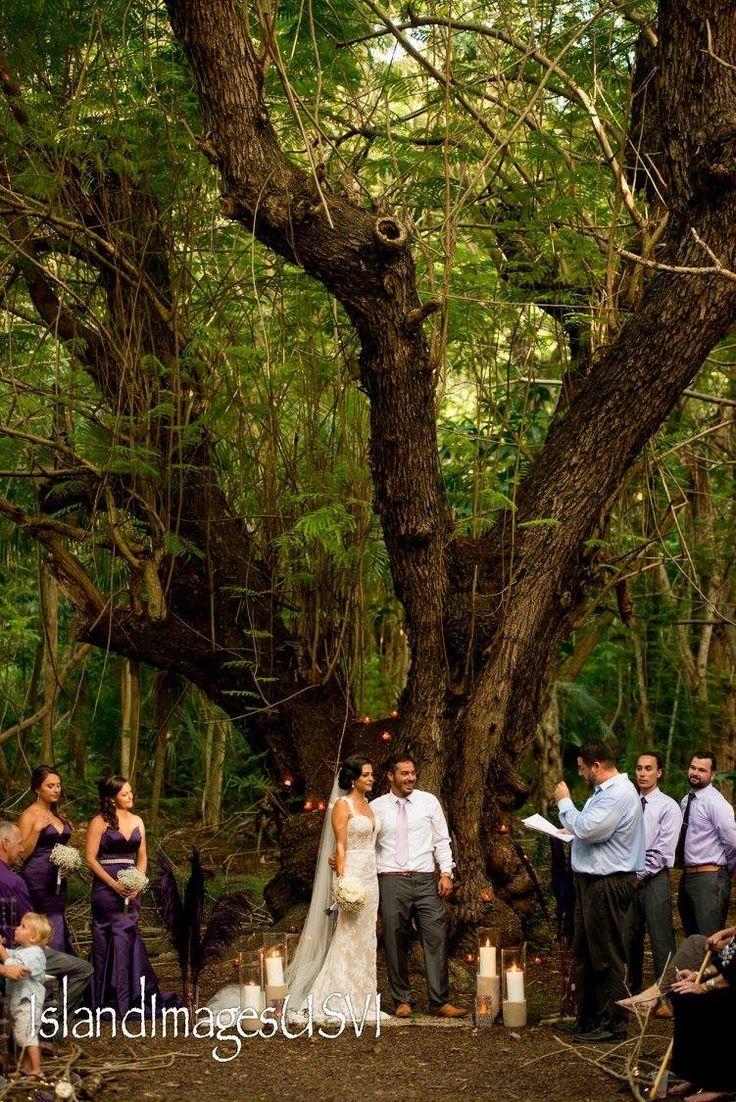 15 best Garden/forest wedding - usvi 9/24/16 images on Pinterest ...