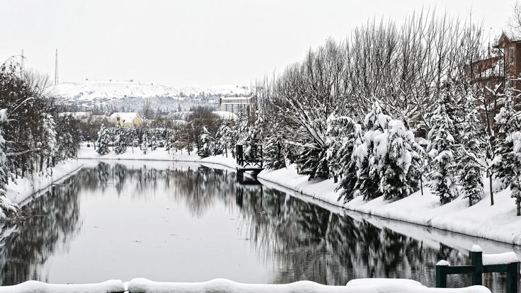 https://flic.kr/p/BXs1JH | We are missing snow (779) | Last day of 2014.