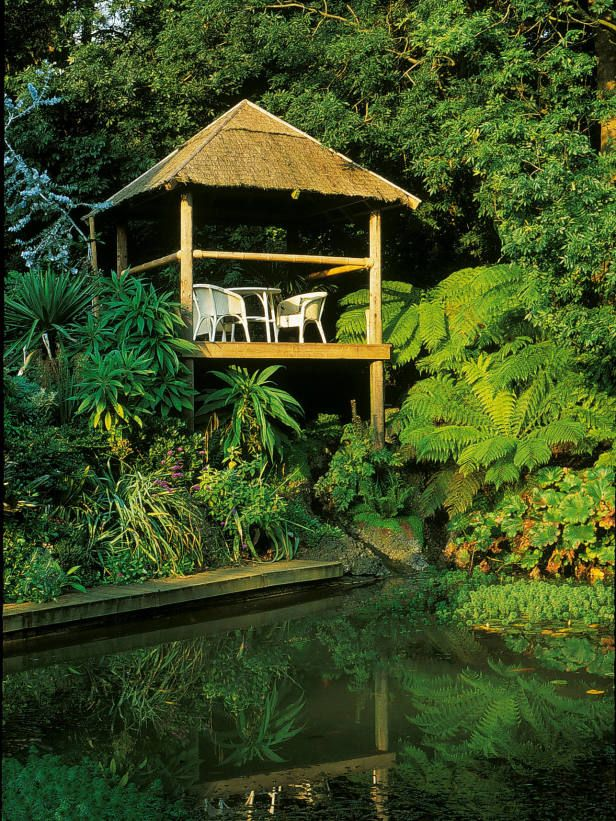 A Lush, Exotic Tropical Garden --> http://www.hgtvgardens.com/photos/gardens-photos/jungle-fever-the-tropical-garden?soc=pinterest