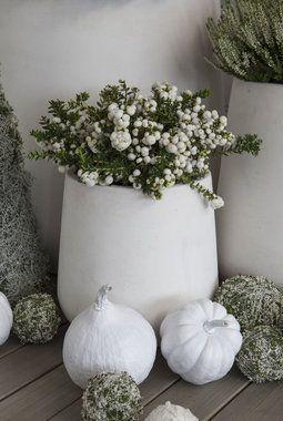 Hvite utepotter med hortensia, strå og pernettia gir et delikat uttrykk.