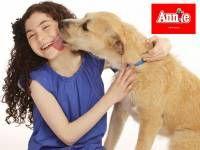 Sunny, Anjing Penampungan Yang Lolos Dari Kematian dan Menjadi Bintang Broadway!