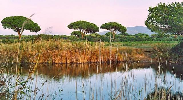 Paesaggi di Maremma - Parco Maremma (Parco Uccellina) by MAREMMAGICA - Lea Pandolfi, via Flickr