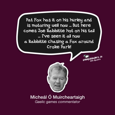 """Pat Fox has it on his hurley and is motoring well now … But here comes Joe Rabbitte hot on his tail … I've seen it all now a Rabbitte chasing a Fox around Croke Park!"" – Micheál Ó Muircheartaigh  (Gaelic games commentator)"