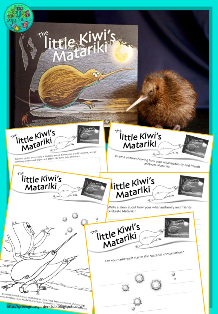 Green Grubs Garden Club: Best Matariki books for Primary {+ FREE follow up activity sheets}