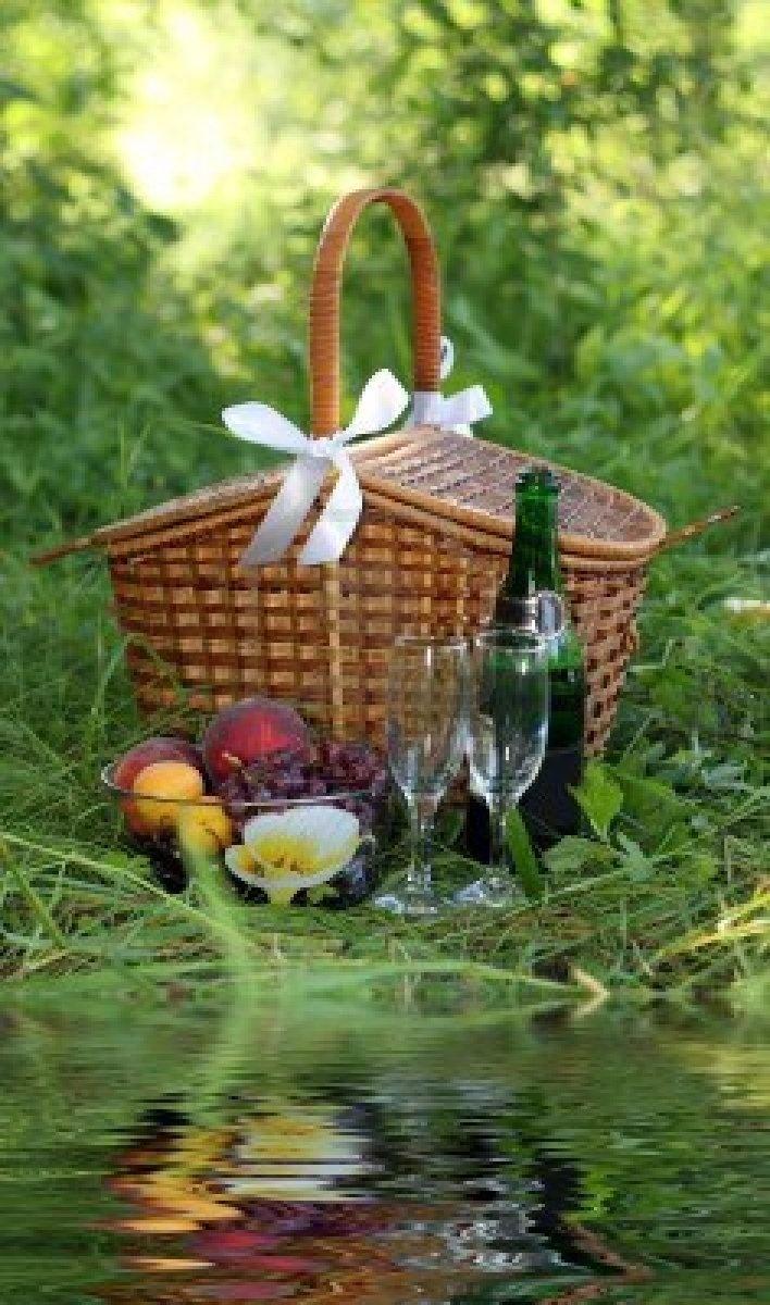 panier de pique-nique au champagne, des fruits et de réflexion de celui-ci Banque dimages