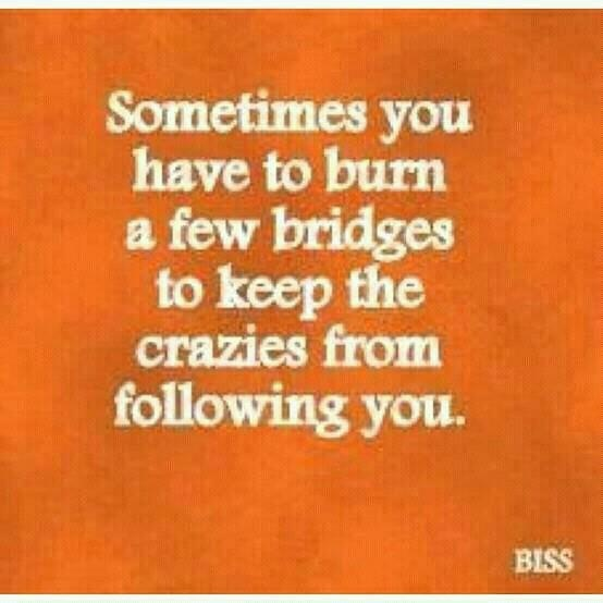 #craziesInspiration, Laugh, Quotes, Crazy, Funny, Truths, Things, Burning Bridges, True Stories
