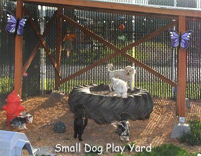 Backyard Dog Run Ideas find this pin and more on backyard bliss dog runs Backyard Puppy Playground Ideas Yahoo Image Search Results