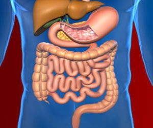 Peritoneal cancer is a rare cancer that develops in the peritoneum. Peritoneal cancers may be primary or secondary and symptoms of peritoneal cancer are vague.