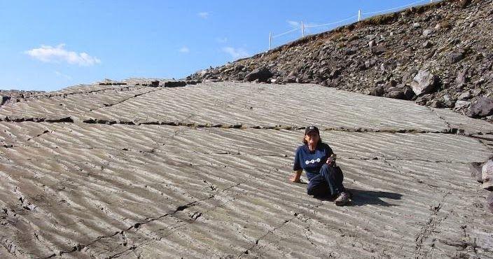 Mistaken Point (Earth's Oldest Fossils Land), Newfoundland, Canada