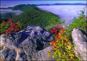 Национальный парк Грейт-Смоки-Маунтинс в Северной Каролине