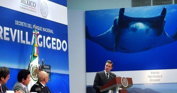 #DESTACADAS:  México convierte a las Revillagigedo en el parque más grande de América del Norte - El Economista