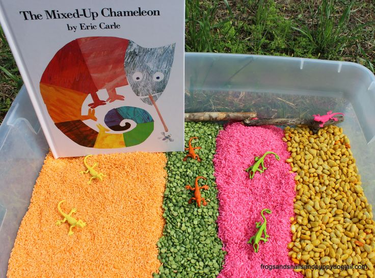 The Mixed Up Chameleon Sensory Bin by FSPDT.  Book inspired sensory activity for kids.