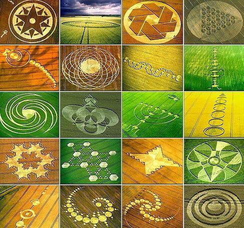 many crop circles