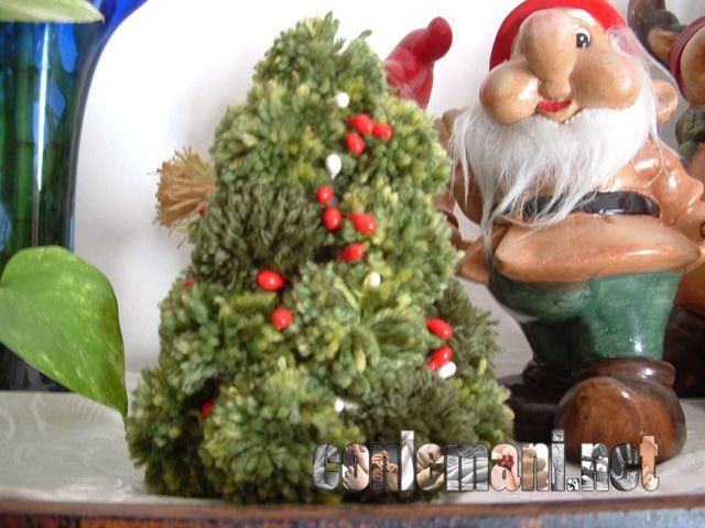 """Chi vuole fare l'albero """"pon pon""""?! #gratis #conlemani"""