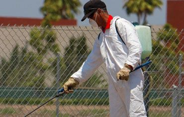 We 'SUGUNA PEST CONTROL' (pest control services Chennai) is one of the Best Pest Control Service vendors in Chennai, Established in 2000 with a vision of imparting fee powerful pest control services.