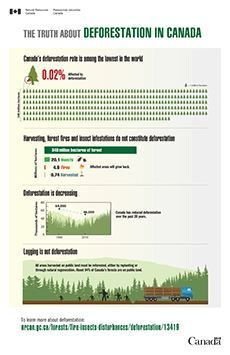 The truth about deforestation in Canada