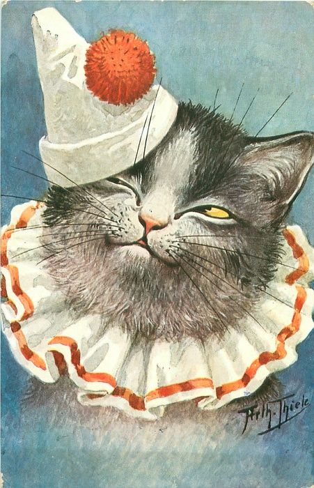 grey/white cat, frilly cloth collar, clowns hat, looks up & left