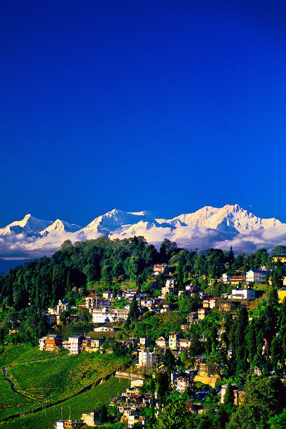Darjeeling, West Bengal, India. The famous Darjeeling Hill Country lies immediately south of Sikkim.